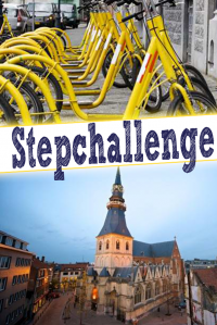 Step Challenge in Hasselt